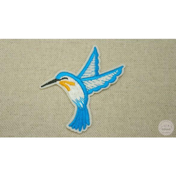 Színes kolibrik (FM122)