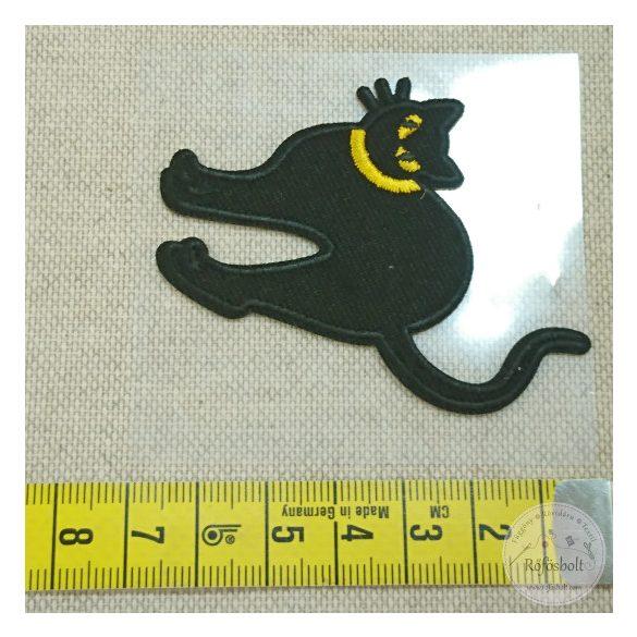 Fekete macska (FM138)
